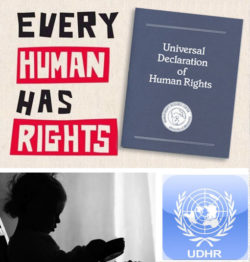 Our-30-human-rights