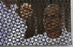 Al-Jazeera journalist Peter Greste is in prison in Egypt on charges of supporting the Muslim Brotherhood. (AFP/Khaled Desouki)