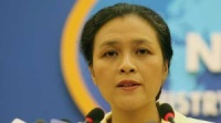 Vietnam always sticks to commitment to UN Charter's principles: diplomat